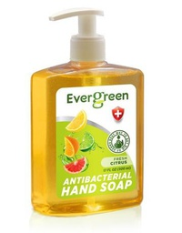 [422368] EverGreen Citrus Antibacterial Hand Soap 12x17 fl oz. Bottle w/ Pump
